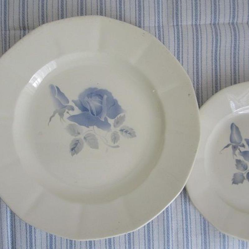 ディゴワン・サルグミンヌのブルー薔薇平皿(大)