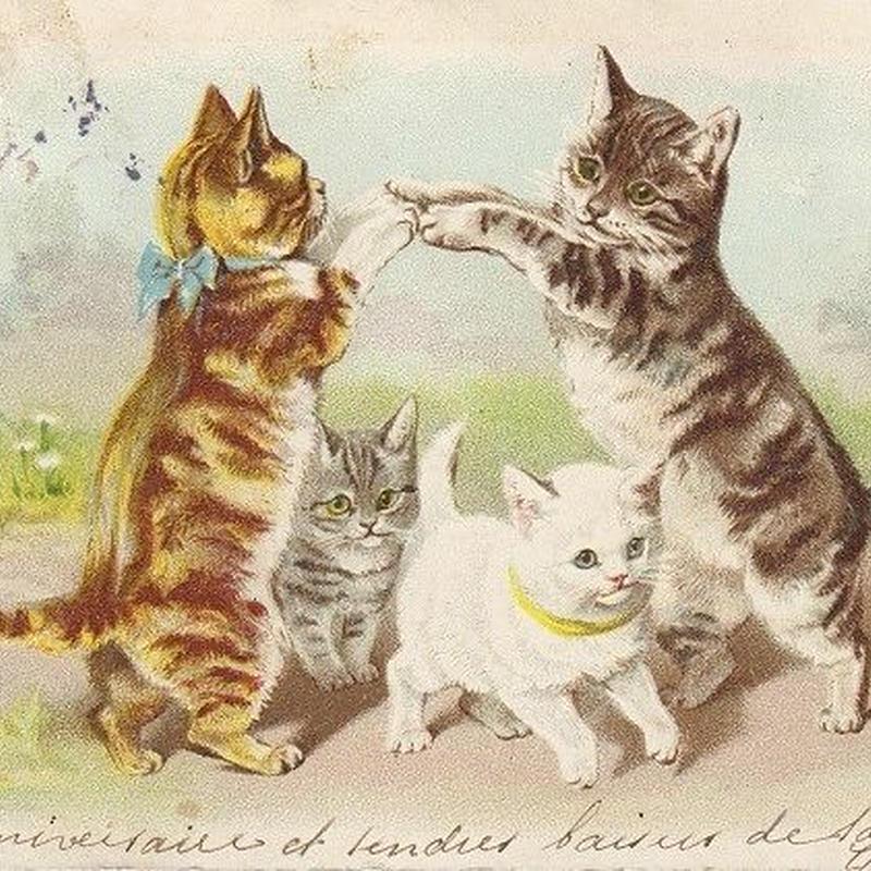 アーチを作る猫ちゃんのポストカード