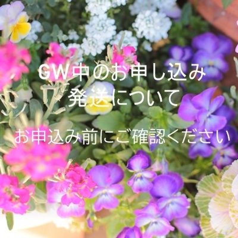 GW中のお申し込み及び発送について【お申込み前にご確認下さい】
