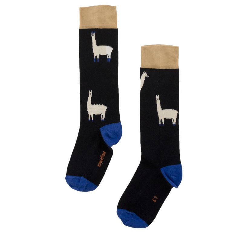 tinycottons llamashairy high socks(darknavy/beige)
