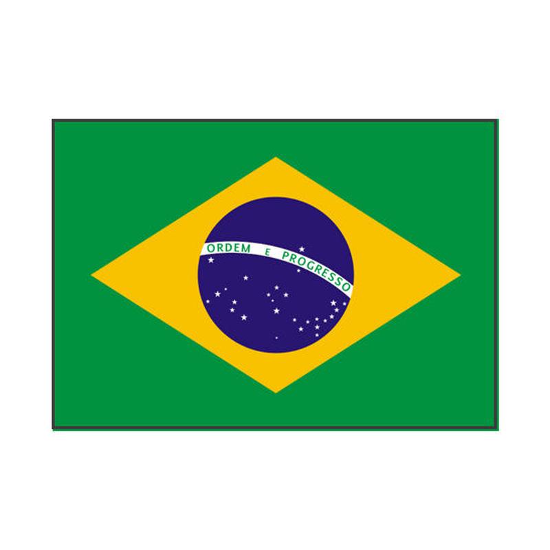 ブラジル 500g 浅深煎り