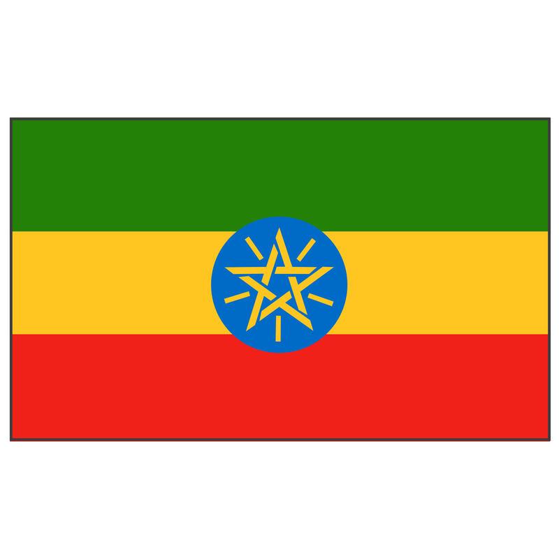 エチオピア200g 浅深煎り