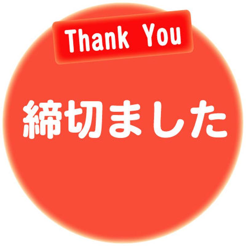 2018.08.11(土) 街まっち 夏恋@大阪市中央公会堂 恋活婚活パーティー 女性チケット