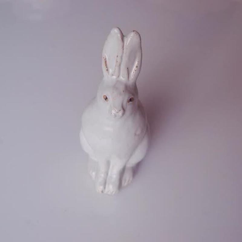 sen (ウサギ)