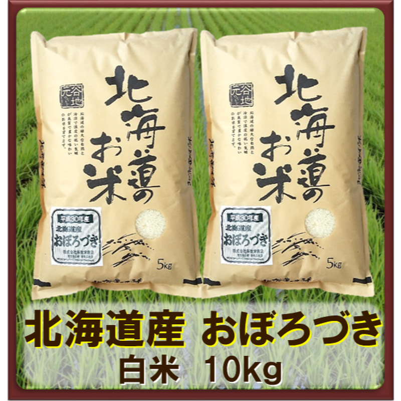 平成30年 北海道産 おぼろづき  白米 10kg