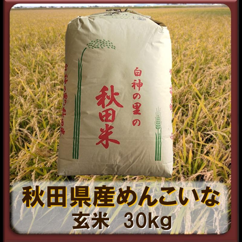 平成30年 秋田県産 めんこいな 一等米  玄米30kg