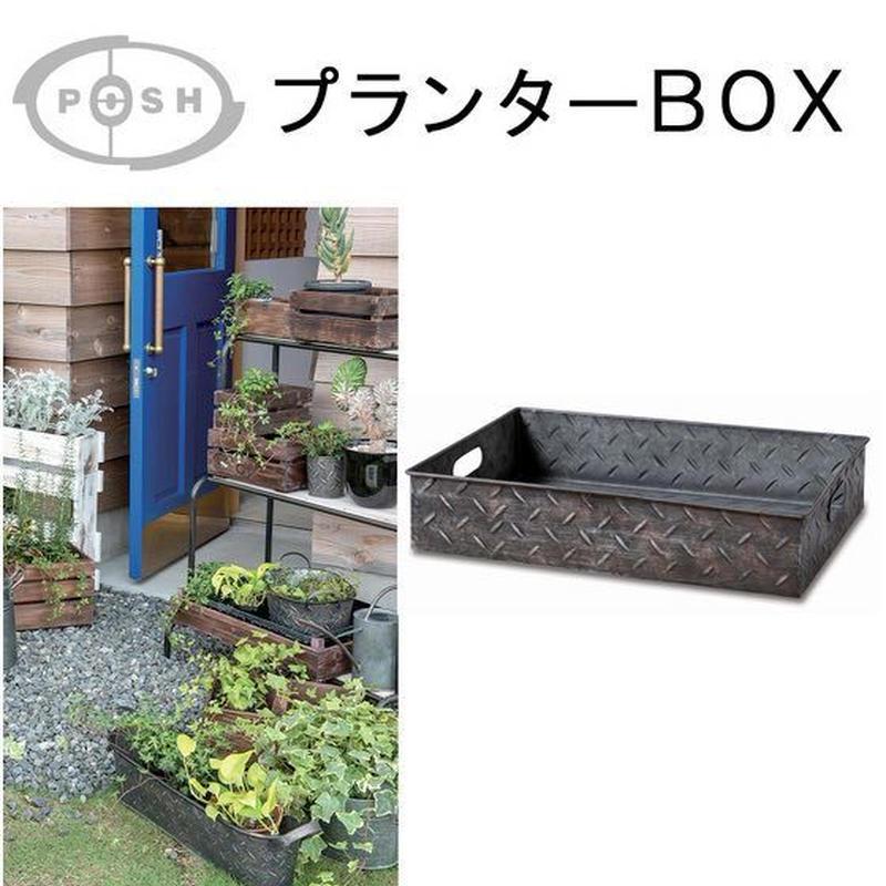 コーデックスや多肉植物を並べたり、移動の際に便利なプランターBOX