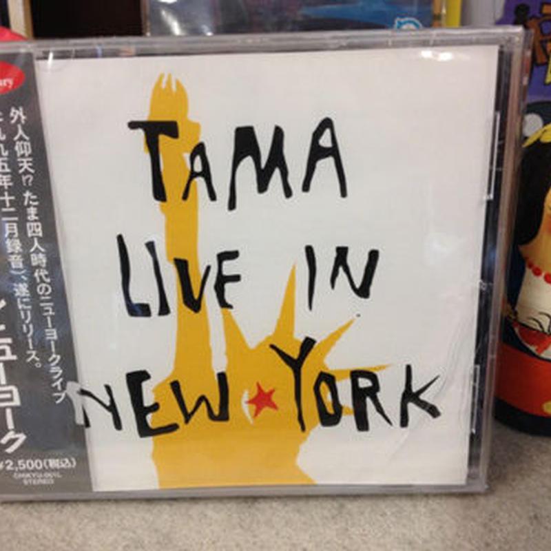 たま 『ライブ・イン・ニューヨーク』