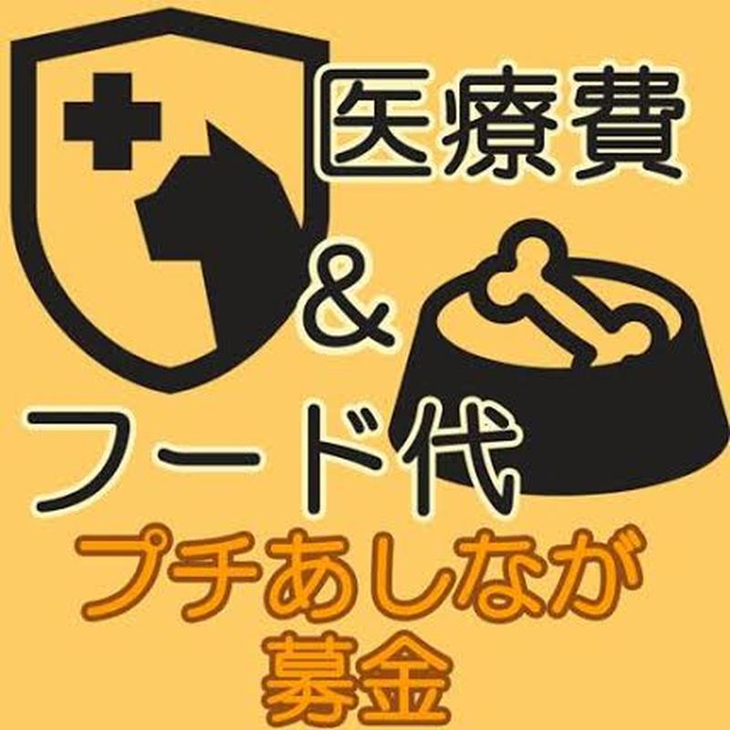 プチあしなが募金<医療費・フード支援>