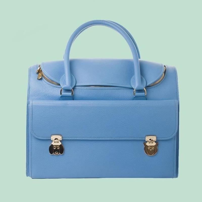 Wonder Nest Pet Travel Bag  BLUE