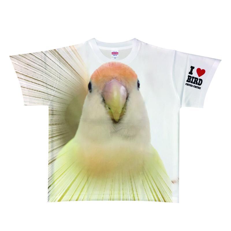 ぱぴたんTシャツ