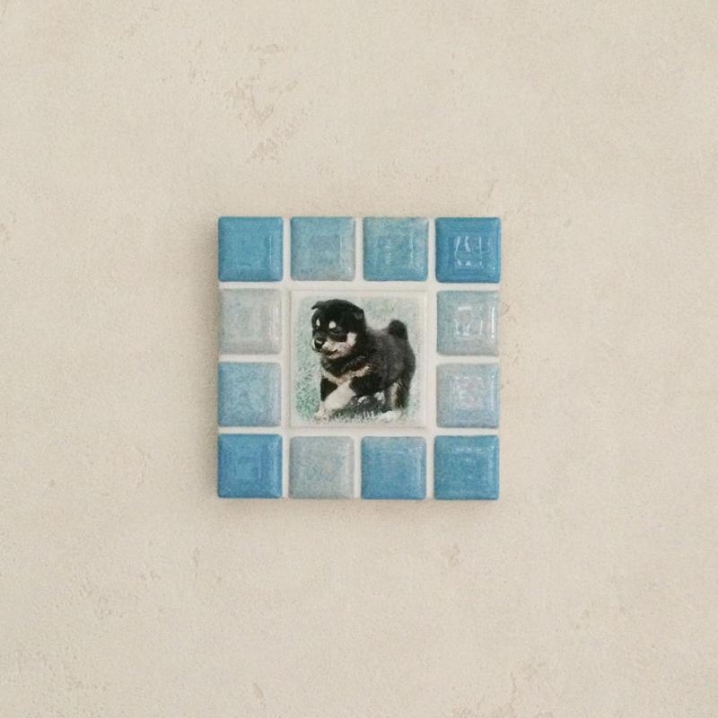 ブライトカラー/スカイブルー(S)◆Tile Picture Frame(S)/Bright Tone/SKY BLUE◆