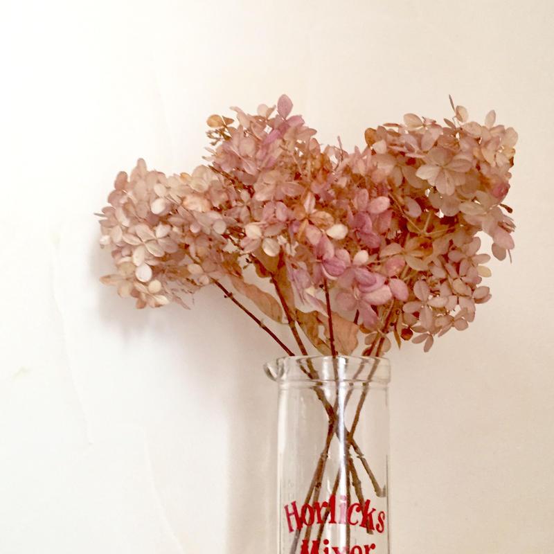 Dried flower's* / Autumn color assort  *B