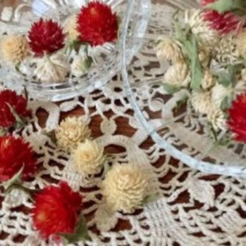 Dried flower's* / Autumn color assort  *C