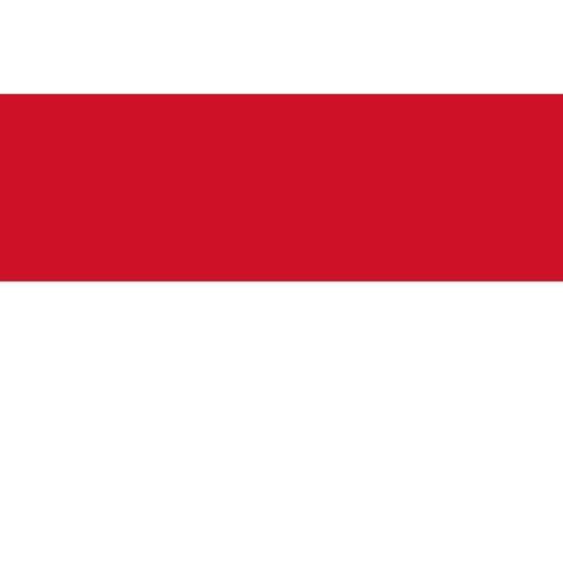 「濃厚こってり苦味」インドネシア マンデリン  スマトラタイガー(フレンチロースト)210g