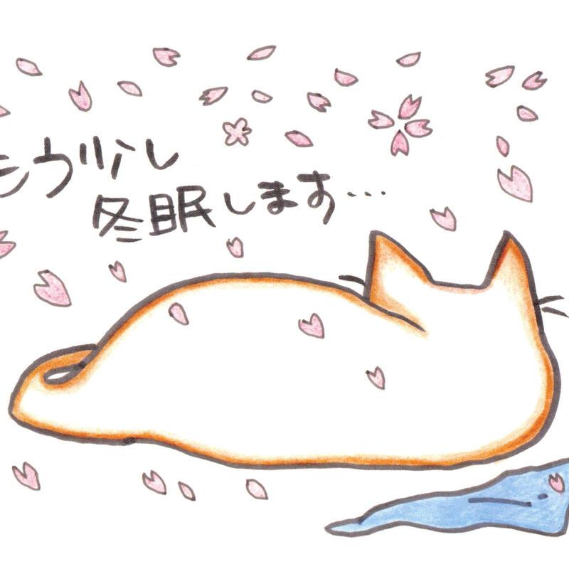 ポストカード10枚セット「ネコ:もう少し冬眠します」