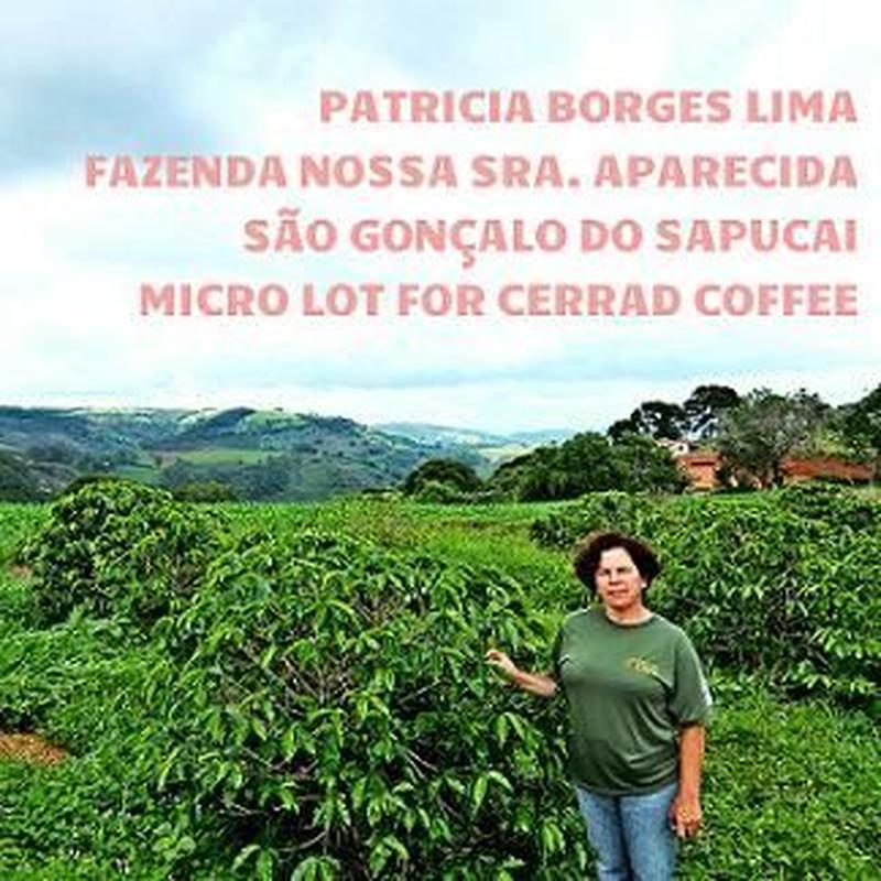 パトリシア 200g~ブラジル・南ミナス