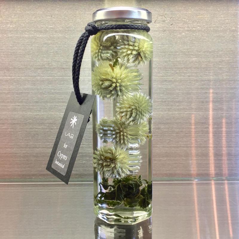 Lab bottle plants LIMITED 200ml (echinopus green)