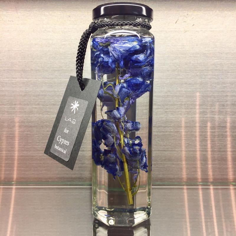 Lab bottle plants LIMITED 200ml (delphinium)