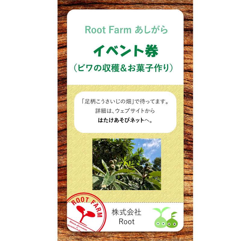 ビワの収穫・コンポート作り体験(2019/6/22)