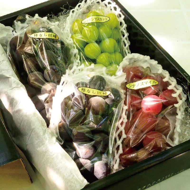 【8/1〜販売】越乃又蔵ぶどう園さん 「3色セット ロザリオビアンコ入」