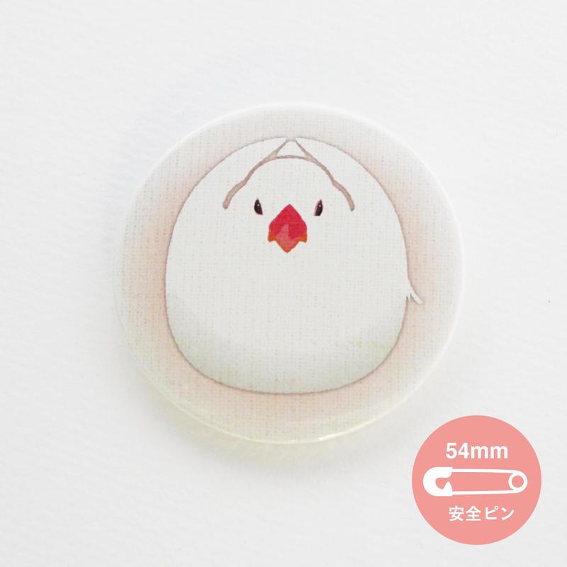白文鳥【54mm】_缶バッジ