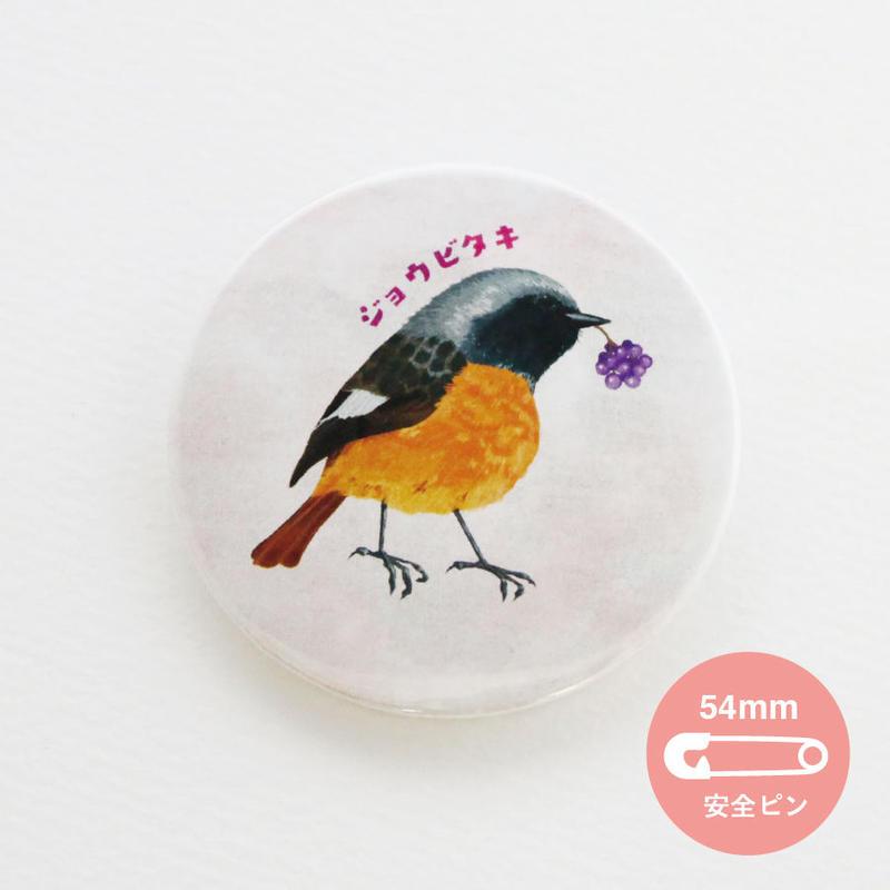 野鳥シリーズ_ジョウビタキ【54mm】_缶バッジ