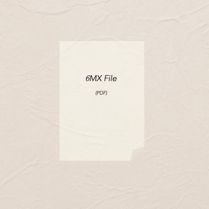 どんぐり問題 小6(File)