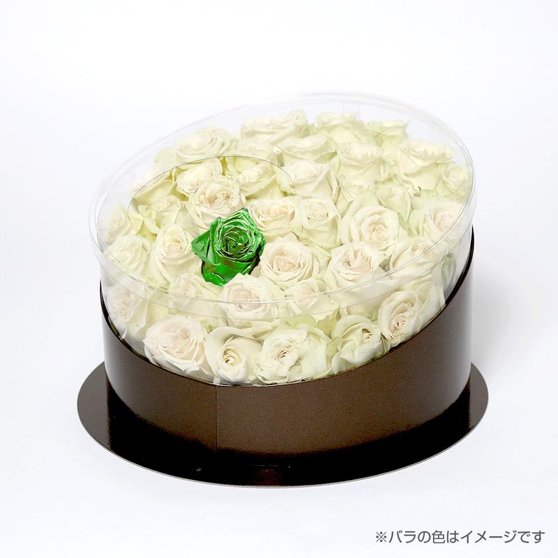 En(white-エメラルド-May 5月)