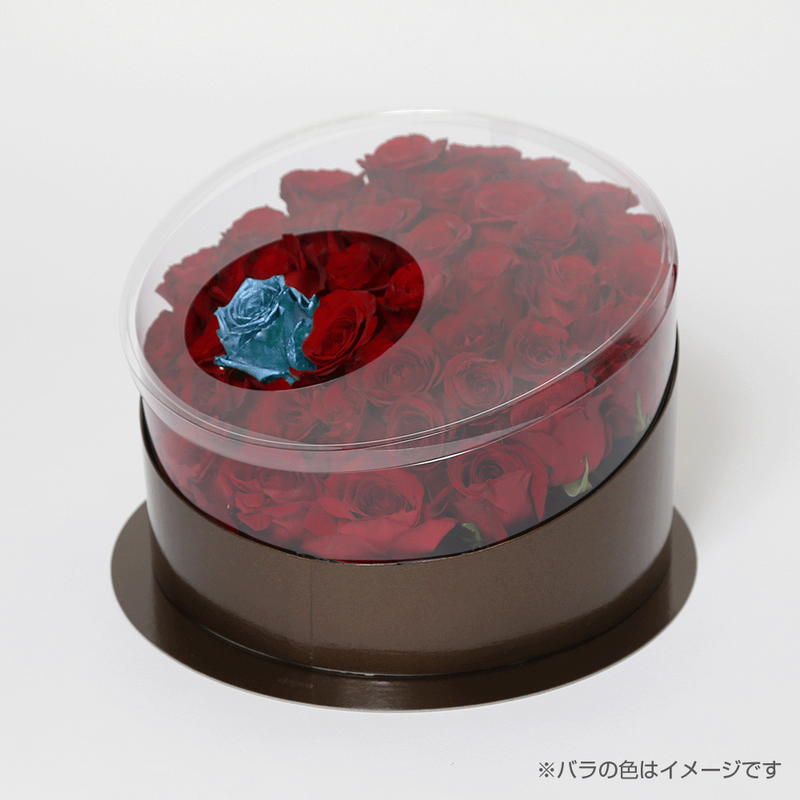En(red-ラピスラズリ-Dec. 12月)