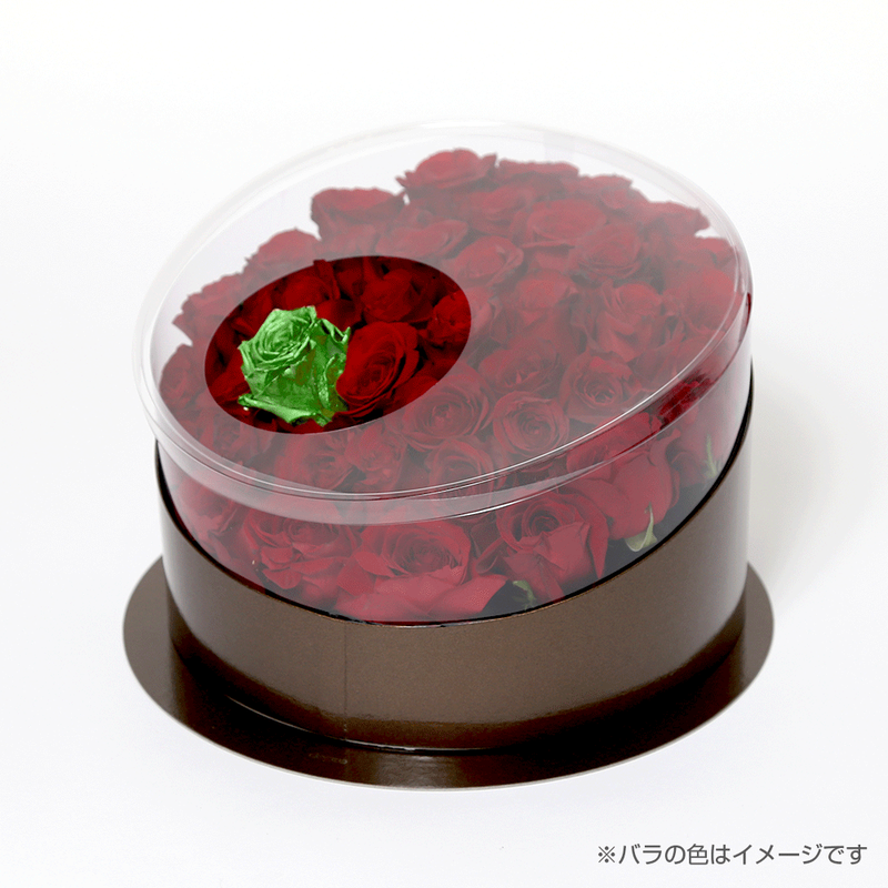 En(red-エメラルド-May 5月)