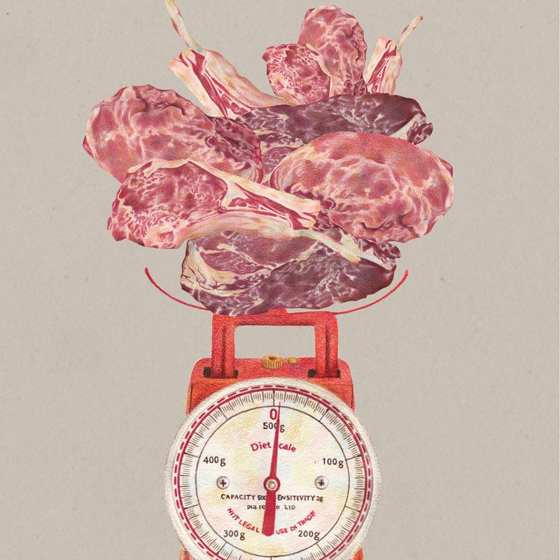 キッチンスケール meat【イラスト:A4サイズ】