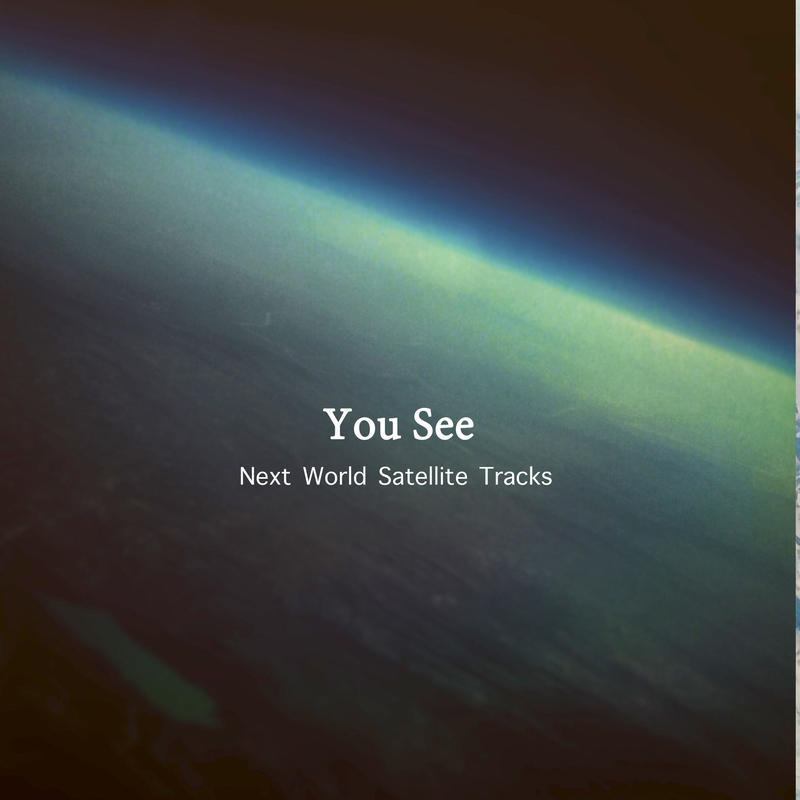 You See/*24bit48khz/Next World Satellite Tracks