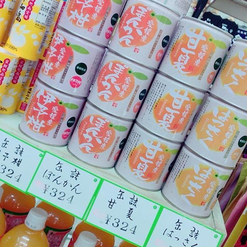 愛媛の柑橘缶詰(いよかん、ぽんかん、甘夏、八朔