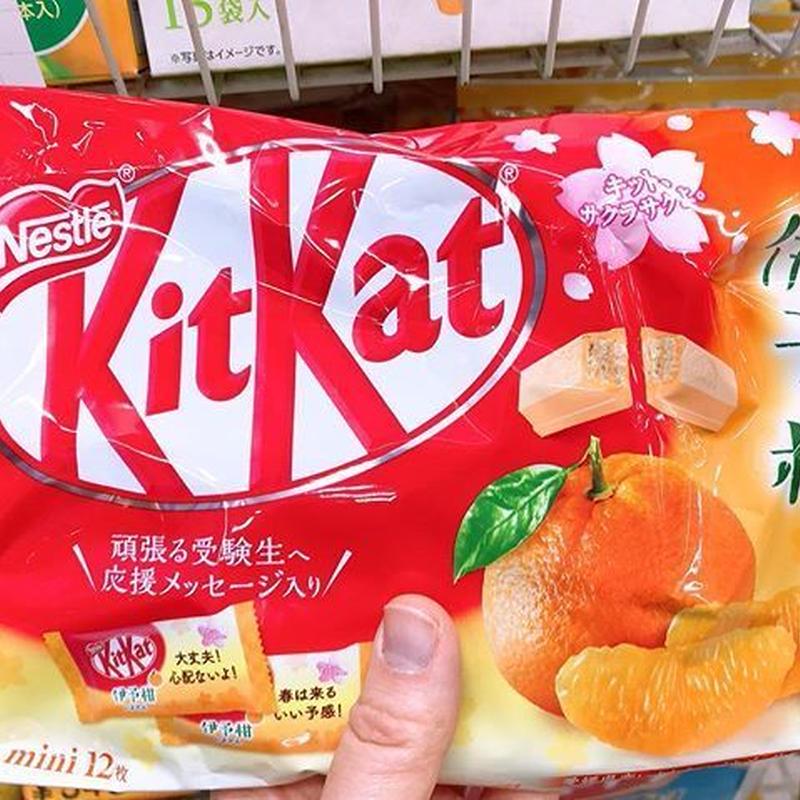 【期間限定】伊予柑キットカット