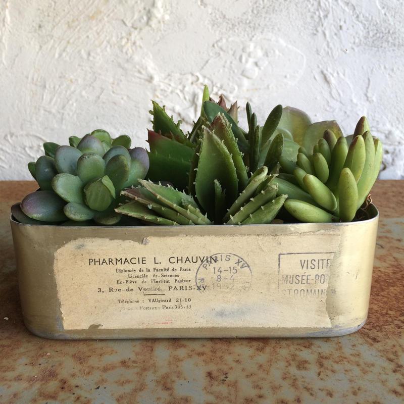 GREEN    LUNCH    BOX   (big)