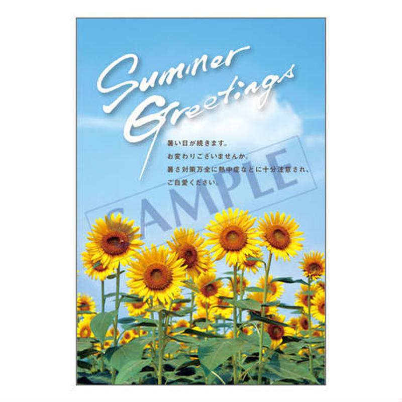 メッセージカード 季節の便り 18-0824 1セット(10枚)