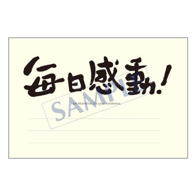 メッセージカード  出会い 感謝 お祝い ご挨拶 03-0018  1セット(10枚)