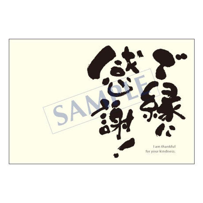 メッセージカード  出会い 感謝 お祝い ご挨拶 03-0001  1セット(10枚)