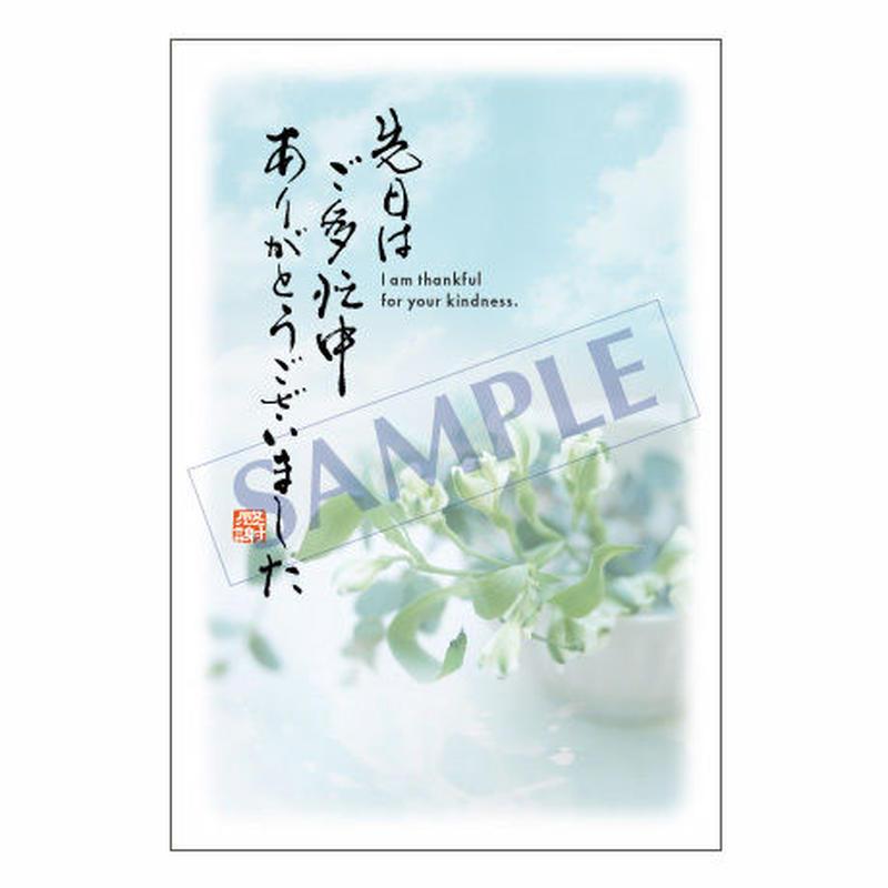 メッセージカード  出会い 感謝 お祝い ご挨拶 14-0642 1セット(10枚)