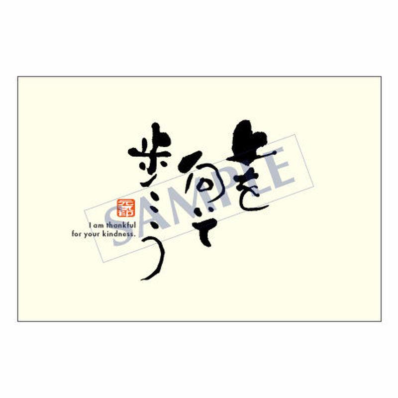 メッセージカード  出会い 感謝 お祝い ご挨拶 08-0292  1セット(10枚)