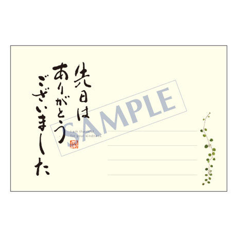 メッセージカード  出会い 感謝 お祝い ご挨拶 11-0491 1セット(10枚)