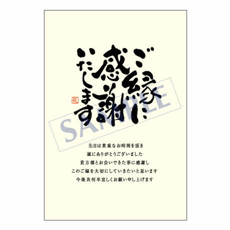 メッセージカード  出会い 感謝 お祝い ご挨拶 06-0163 1セット(10枚)