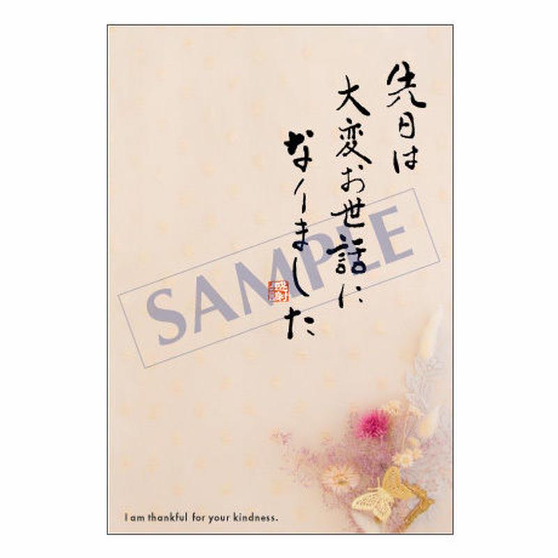 メッセージカード  出会い 感謝 お祝い ご挨拶 14-0638 1セット(10枚)
