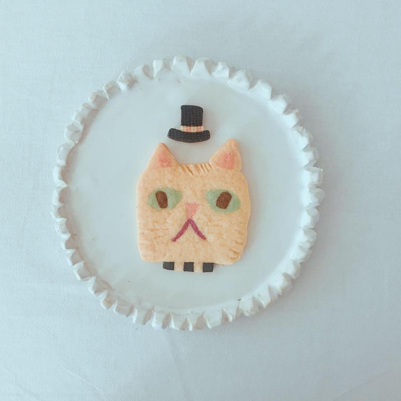 whiteネコ(クッキー1枚、ギフトボックス入り)