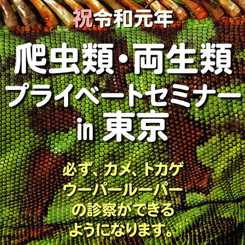 爬虫類・両生類 プライベートセミナー in 東京