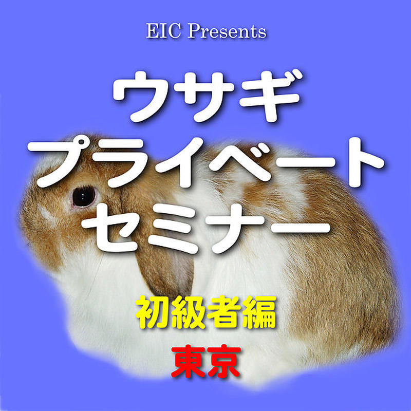 ウサギ プライベートセミナー:初級者編:東京