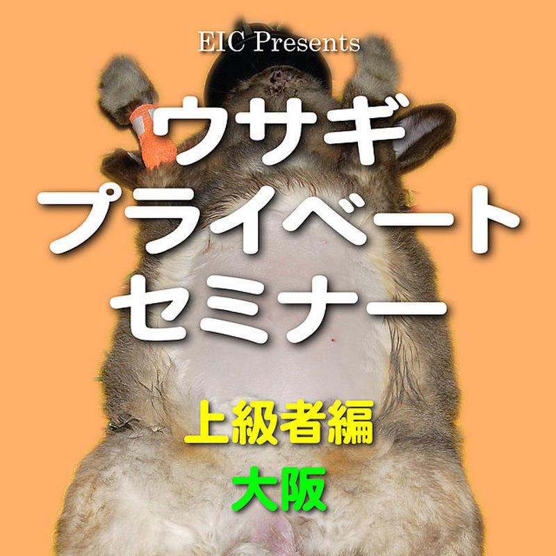 ウサギ プライベートセミナー:上級者編:大阪