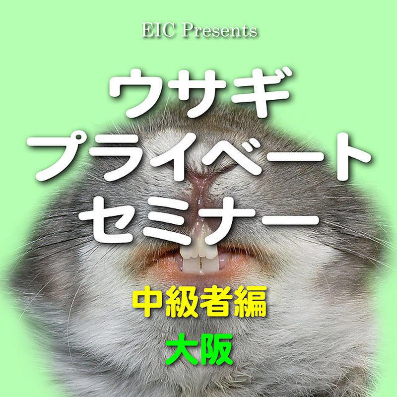 ウサギ プライベートセミナー:中級者編:大阪