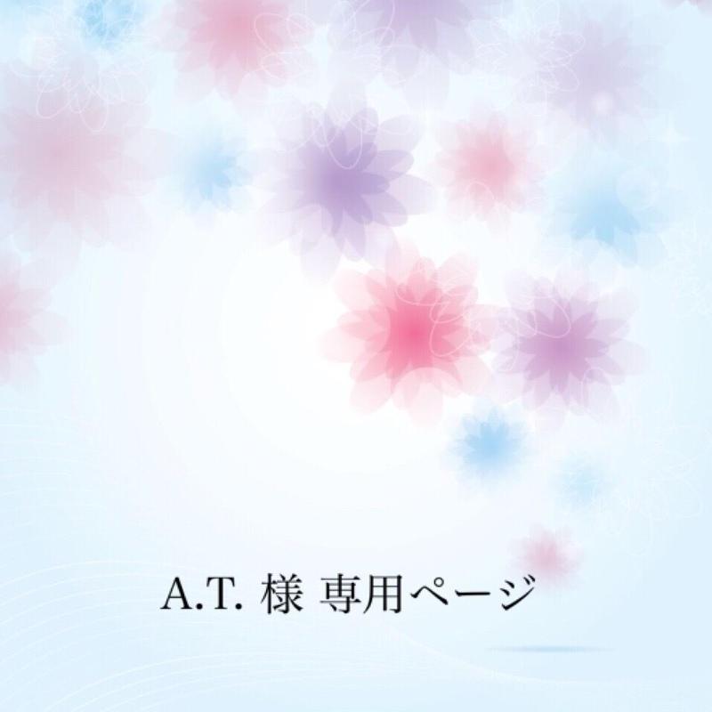 A.T.様 専用ページ